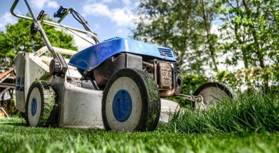 We Rank Lawnmower 384589 960 720